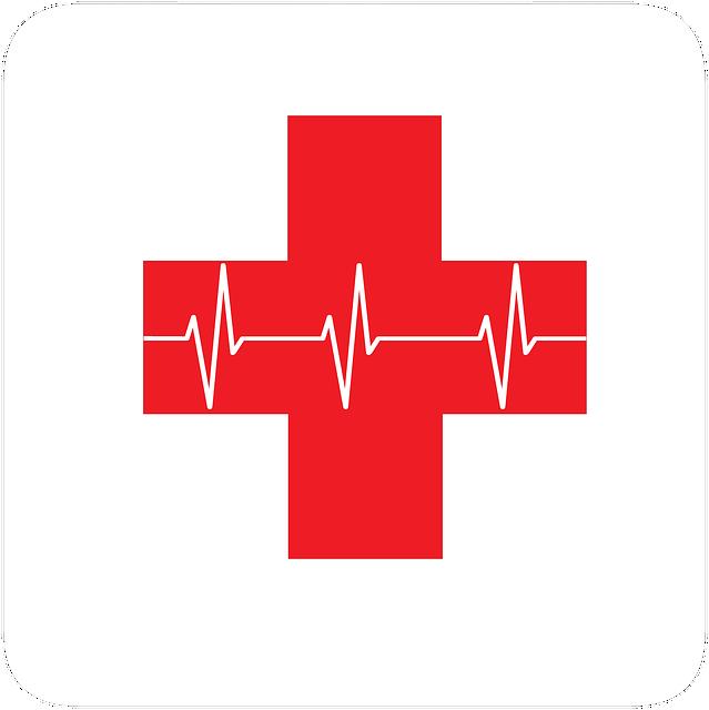 Centre intégré de santé et services sociaux