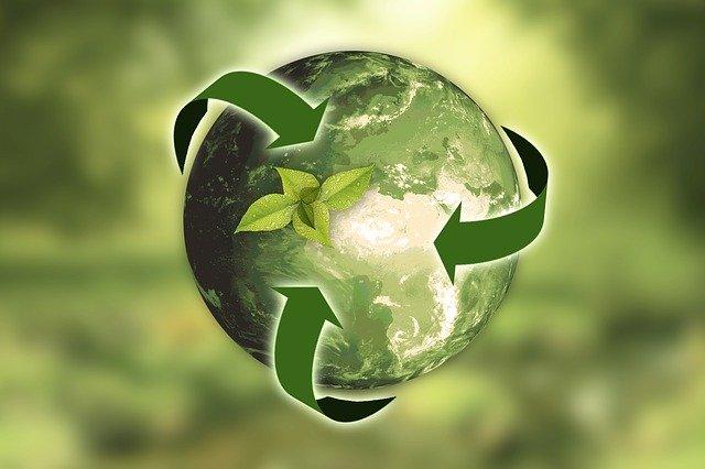 Écologie / Récupération / Environnement